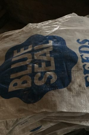 Blue Seal Feed Bags for Sale